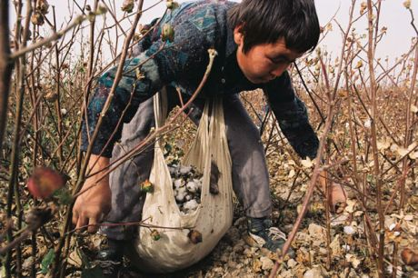 Universal Children's Day: Time to End the Worst Forms of Child Labour