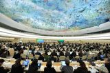 Quo Vadis? Unsolicited Advice to Business and Human Rights Treaty Sponsors