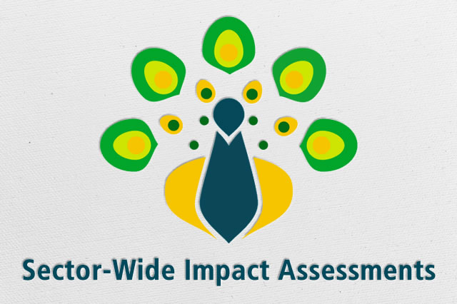 Sector-Wide Impact Assessment Programme