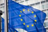 More Effective Engagement between the European Union and Non-State Actors on Human Rights