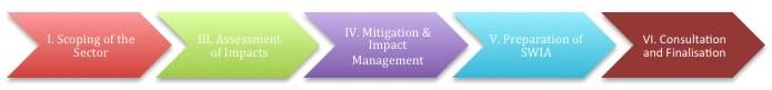 Impact Assessment Steps