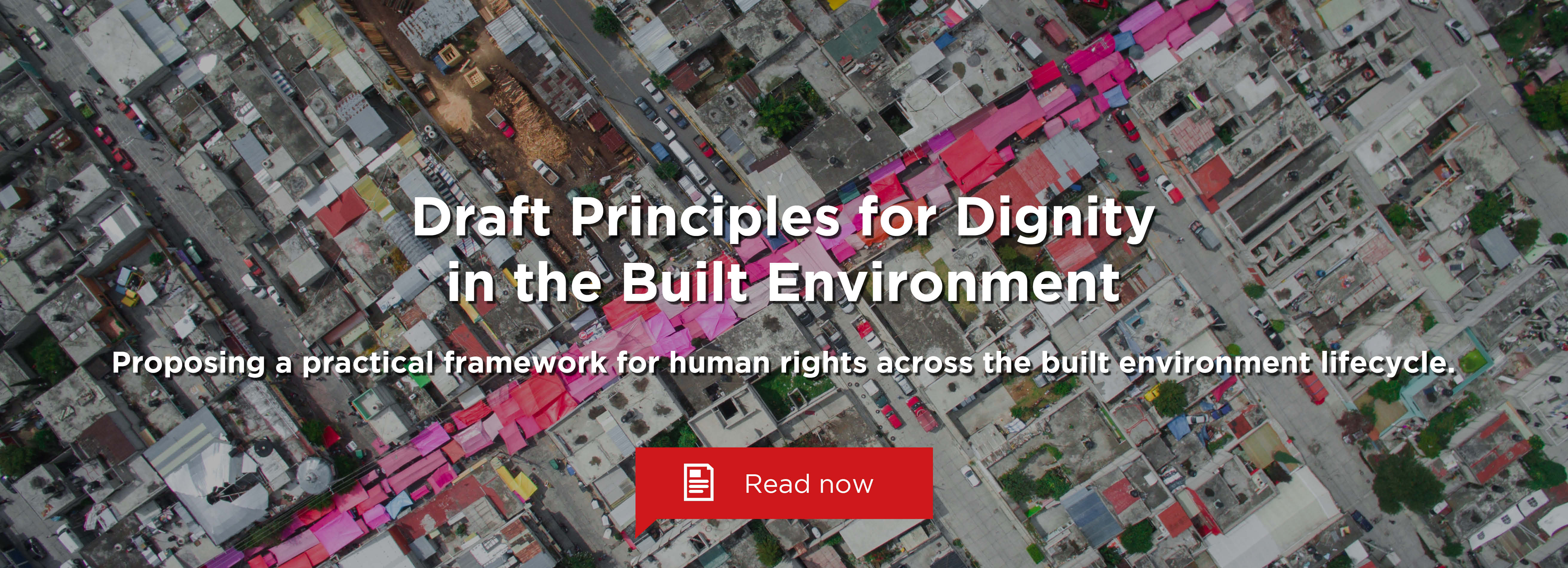 Draft Principles for Dignity in the Built Environment