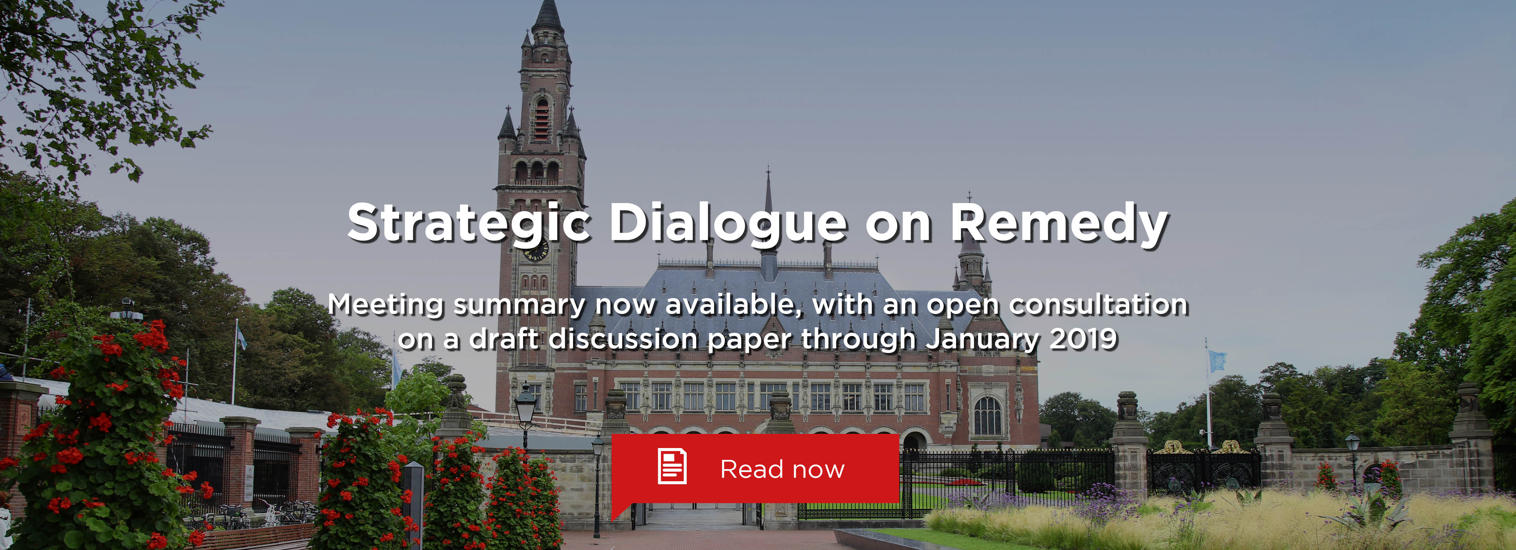 Strategic Dialogue on Remedy