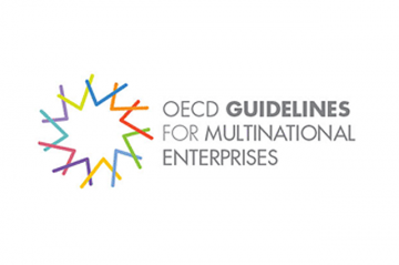 The 2011 update of the OECD Guidelines for Multinational Enterprises ('the Guidelines) included a stronger human rights chapter fully aligned with the UNGPs.