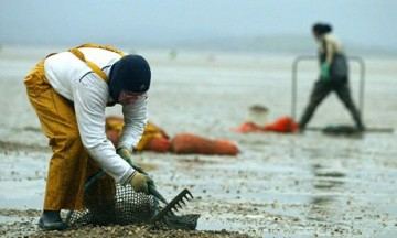 Photo: Guardian - http://www.theguardian.com/sustainable-business/business-protect-vulnerable-workers-human-rights