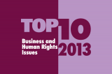 Top Ten Issues in 2013